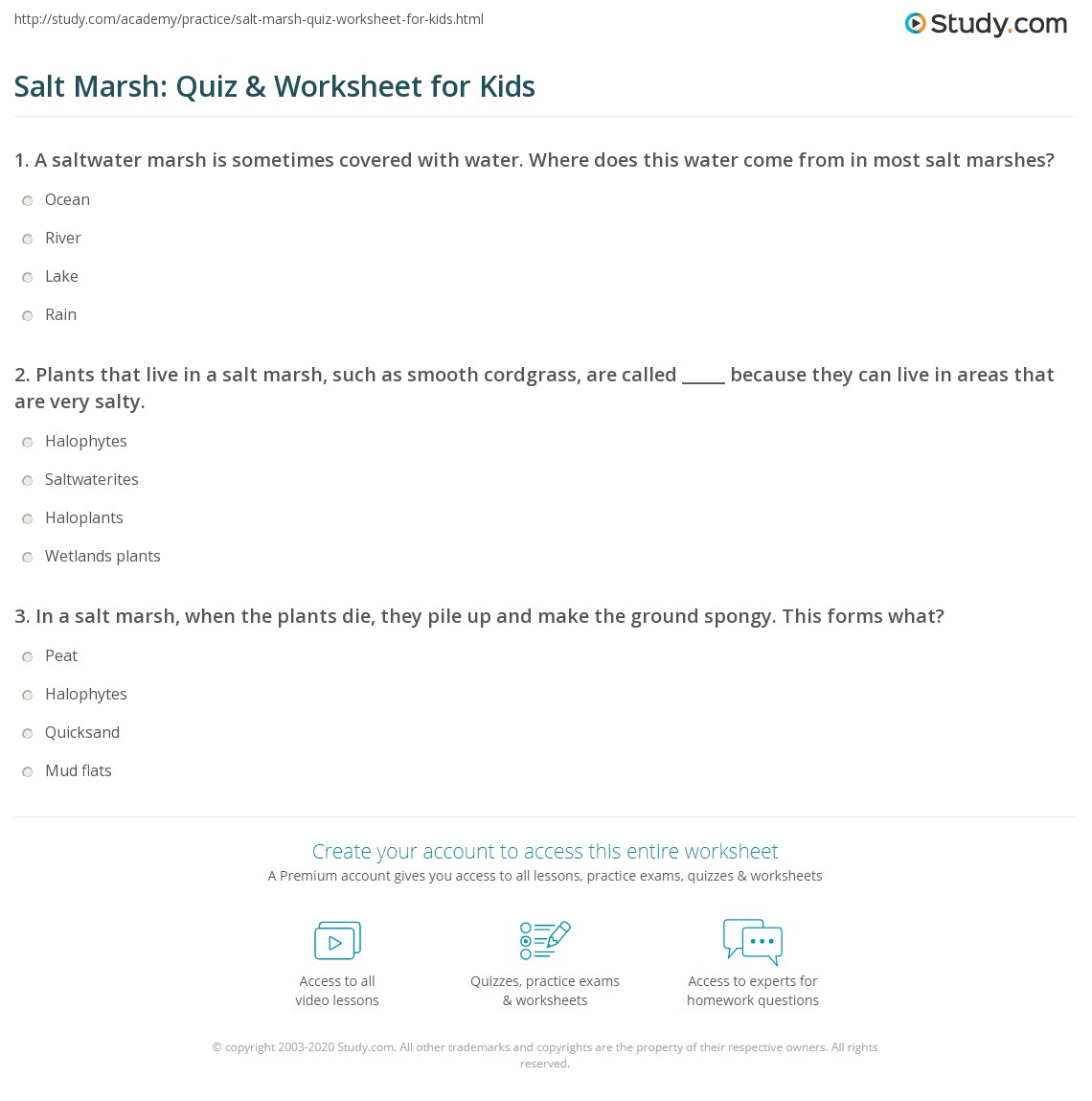 Salt Marsh Quiz Amp Worksheet For Kids