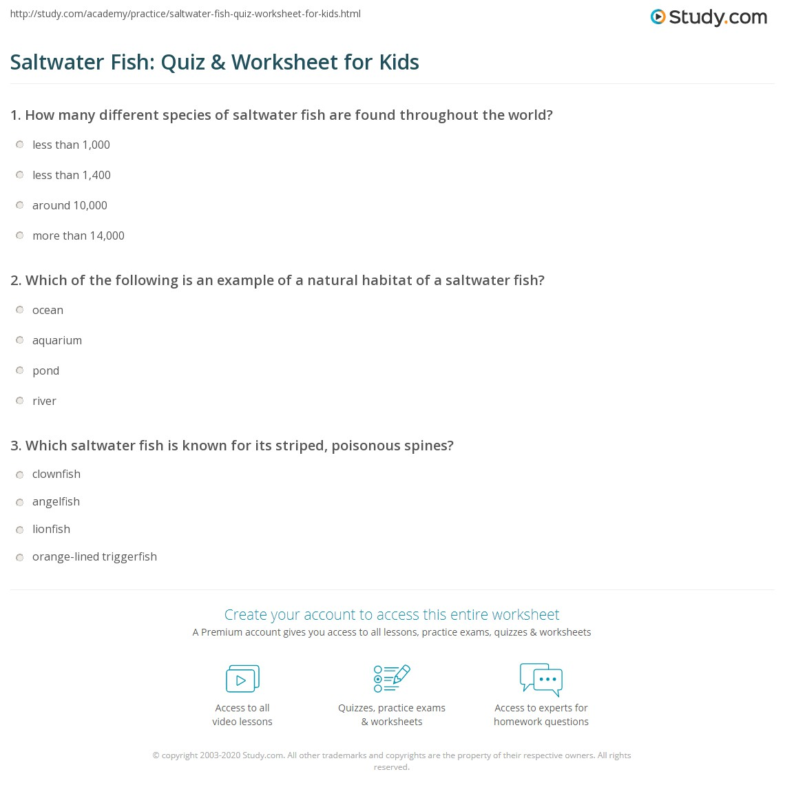 Saltwater Fish Quiz Amp Worksheet For Kids