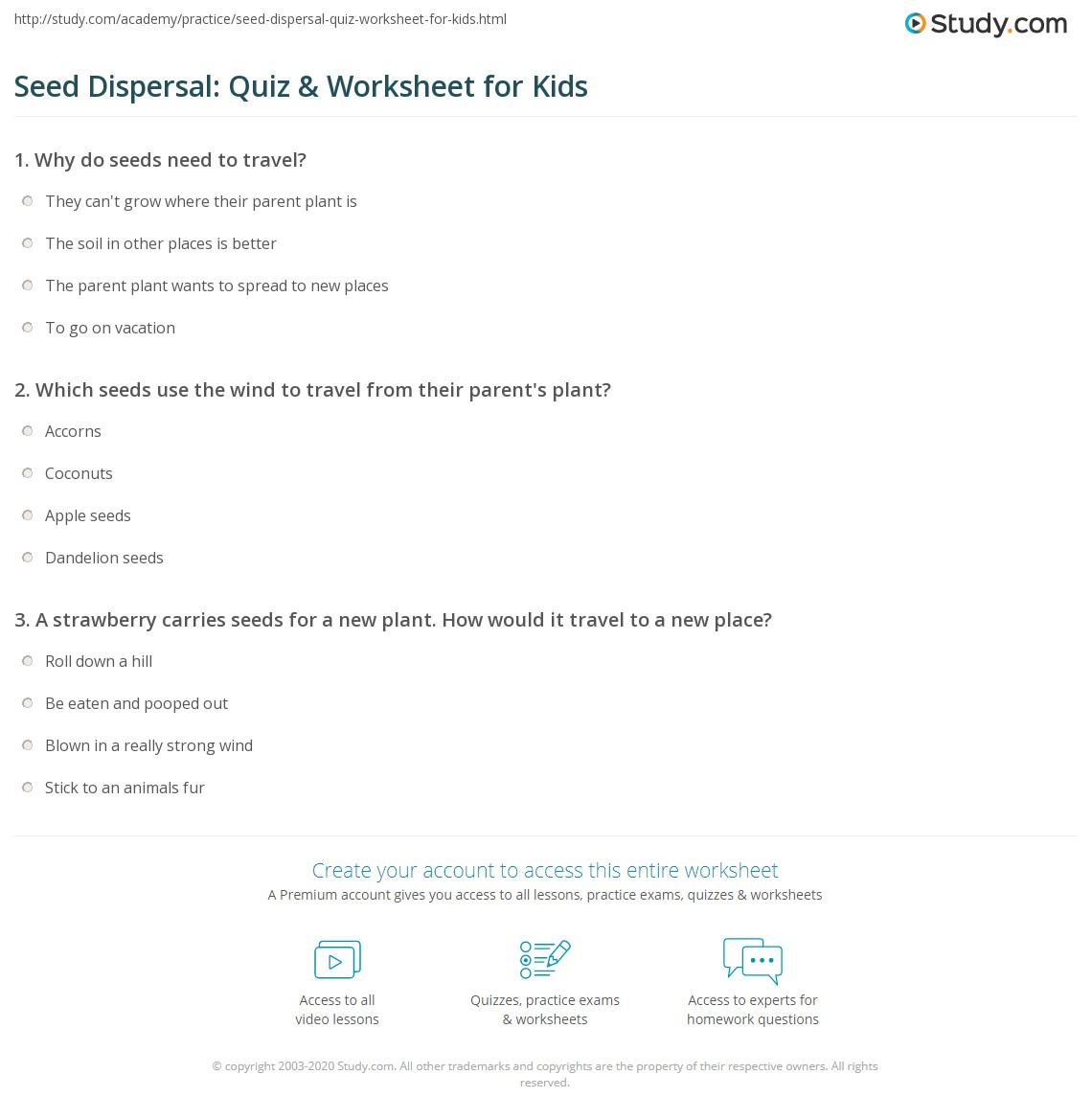 Seed Dispersal Quiz Amp Worksheet For Kids