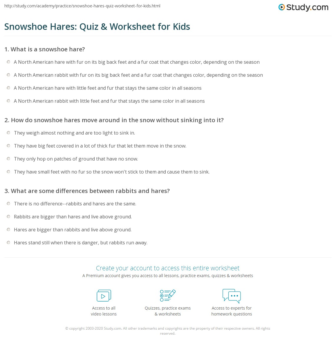 Snowshoe Hares Quiz Amp Worksheet For Kids