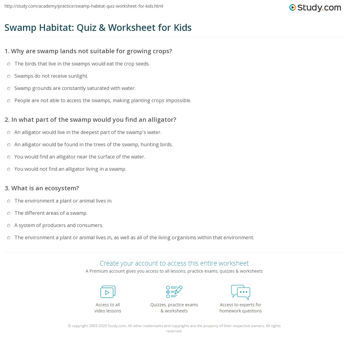 Swamp Habitat Quiz Amp Worksheet For Kids