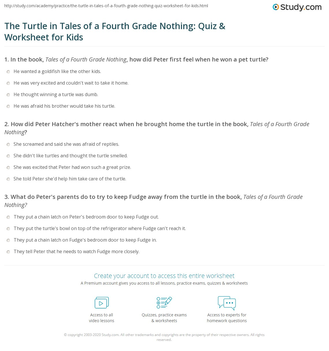 The Turtle In Tales Of A Fourth Grade Nothing Quiz Amp Worksheet For Kids