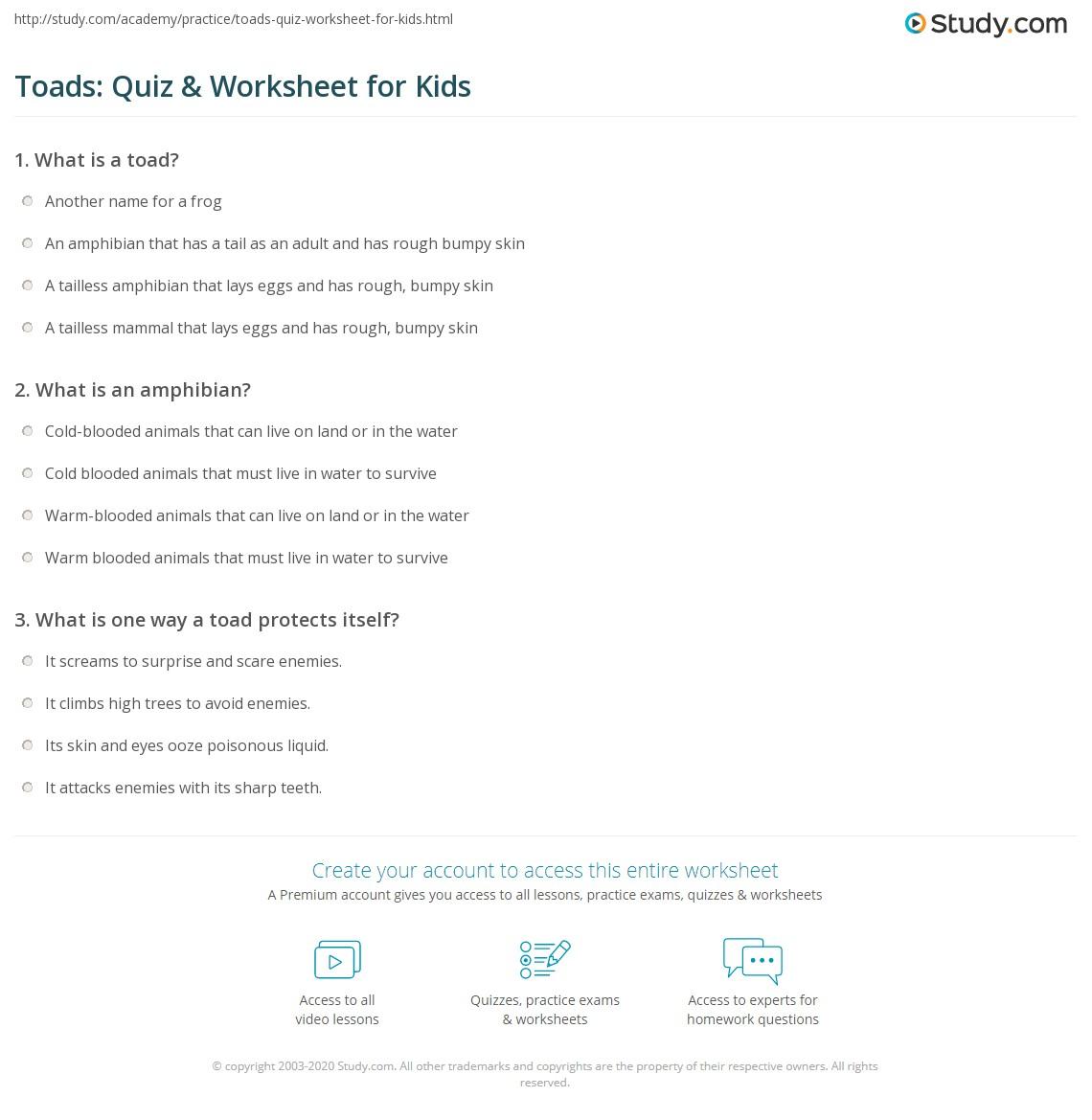 Toads Quiz Amp Worksheet For Kids