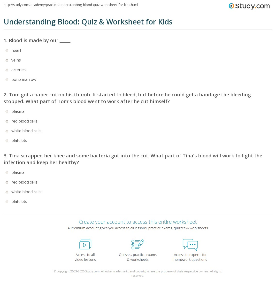 Understanding Blood Quiz Amp Worksheet For Kids