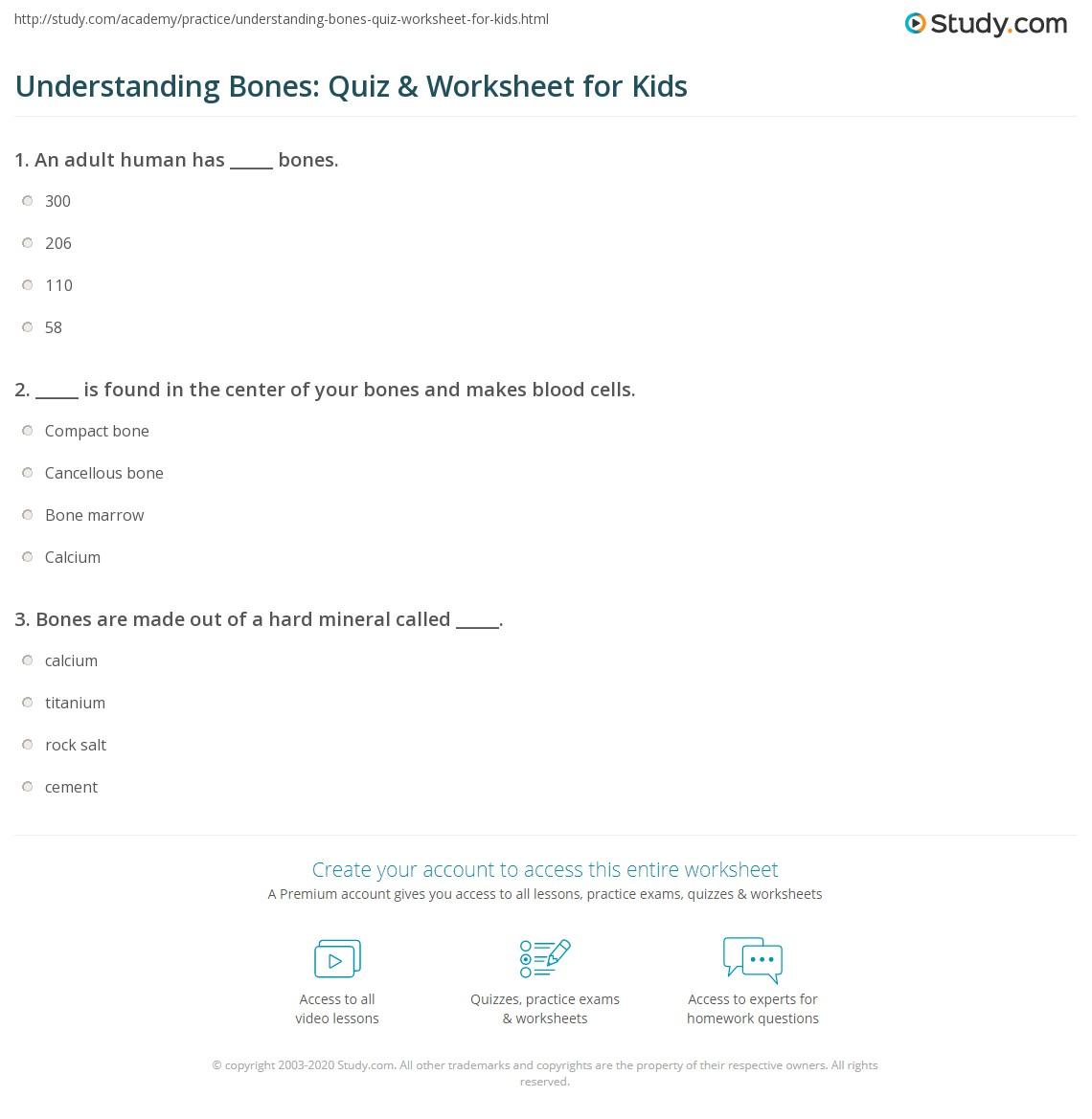 Understanding Bones Quiz Amp Worksheet For Kids