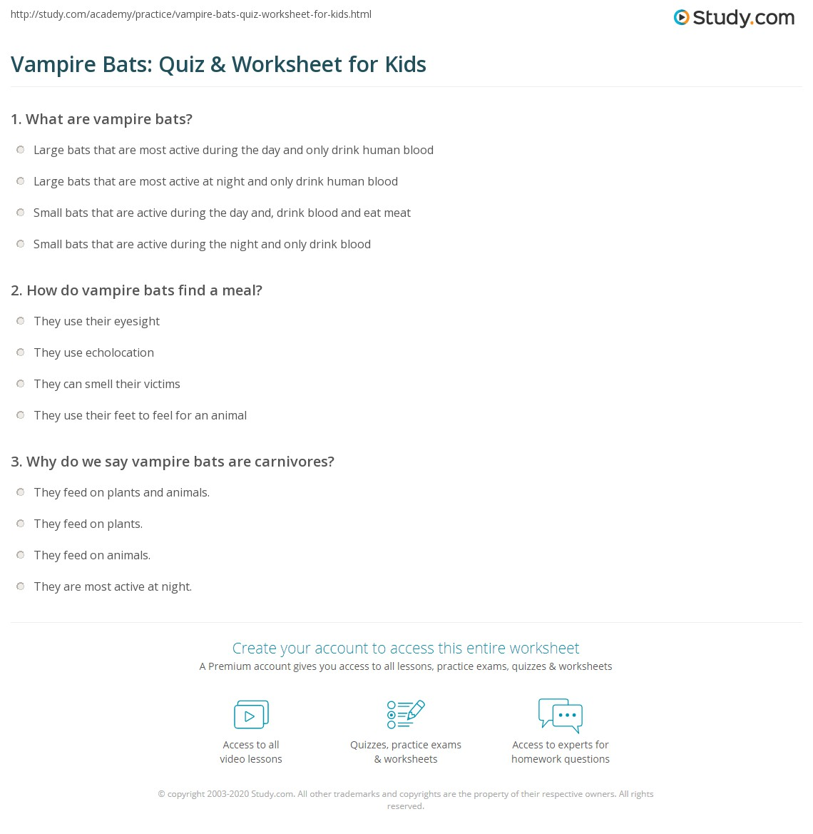 Vampire Bats Quiz Amp Worksheet For Kids