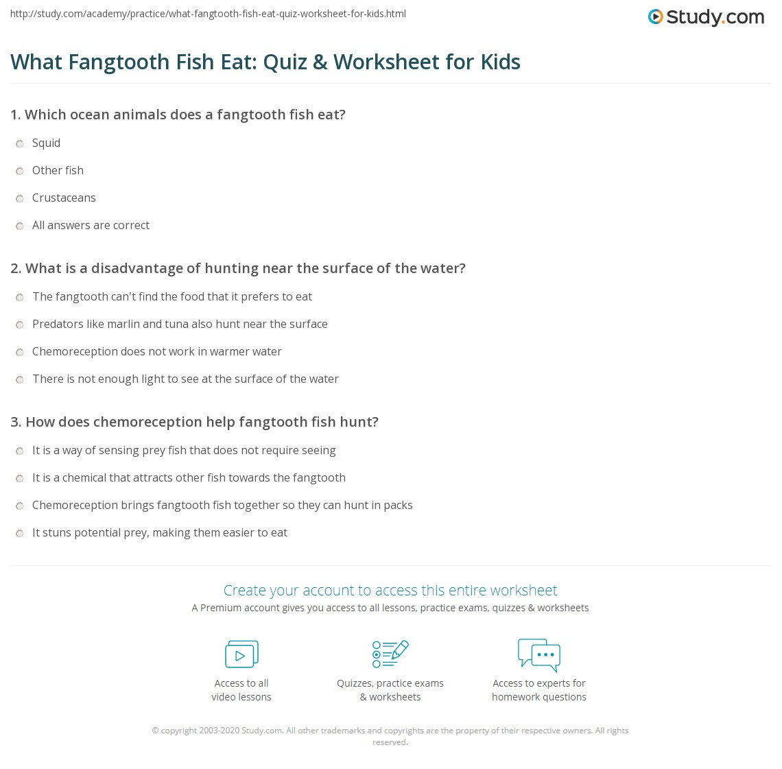What Fangtooth Fish Eat Quiz Amp Worksheet For Kids