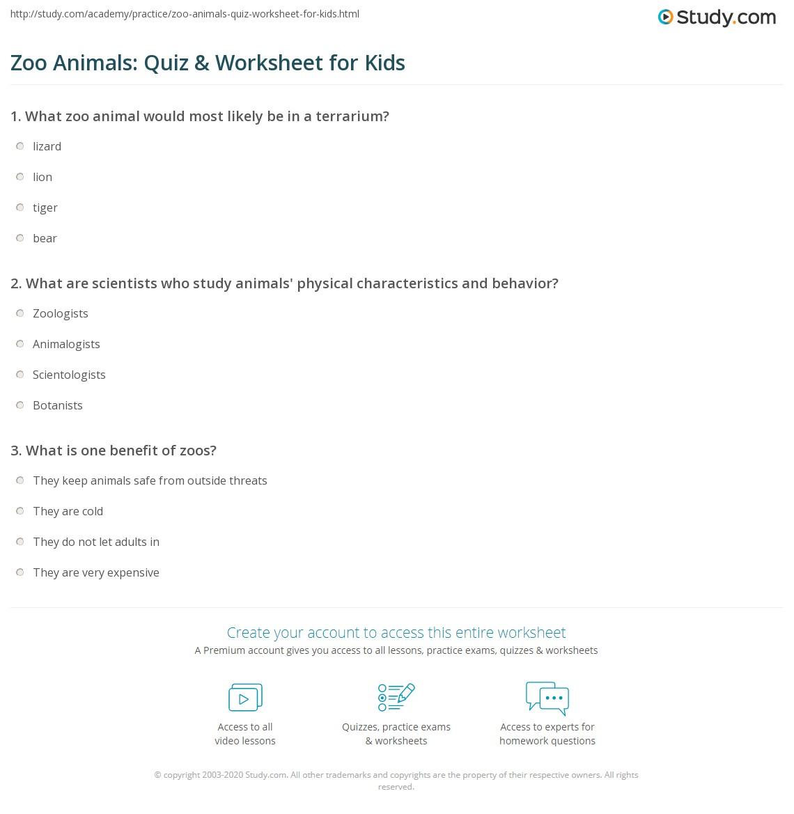 Zoo Nim Ls Quiz W Ksheet Kids Study