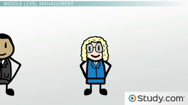management in organizations: top, middle & low-level managers
