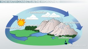What is the Hydrosphere?  Definition & Examples  Video
