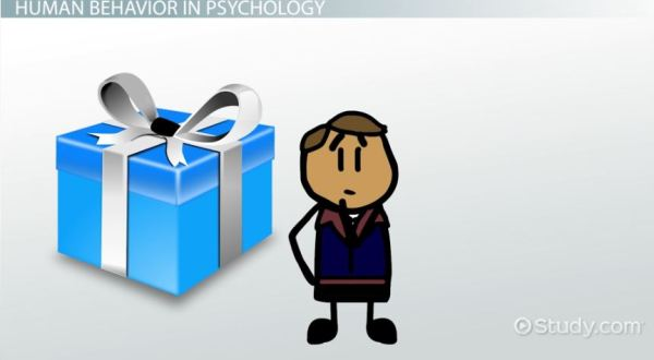 What is Human Behavior? - Definition & Explanation - Video ...