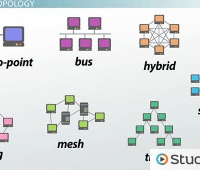 How Star Bus Ring Mesh Topology Connect Computer Networks In Organizations Video Lesson Transcript Study Com