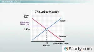 Minimum Wage and its Effects on Employment  Video & Lesson Transcript | Study