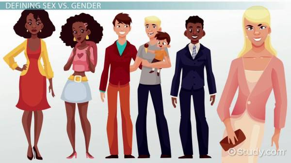 Sex and Gender in Society: Differences, Preferences ...
