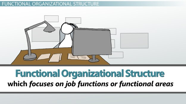 what is organizational structure of management? - types & examples