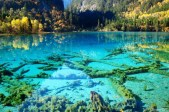 Jiuzhaigou, a wonderful place for visit. Plenty of teleplays are shot at there for it's fabulous scenes. It's famous for its waterfalls, green-colored waters, colorful scenes. I went there in 2014 with my mom.
