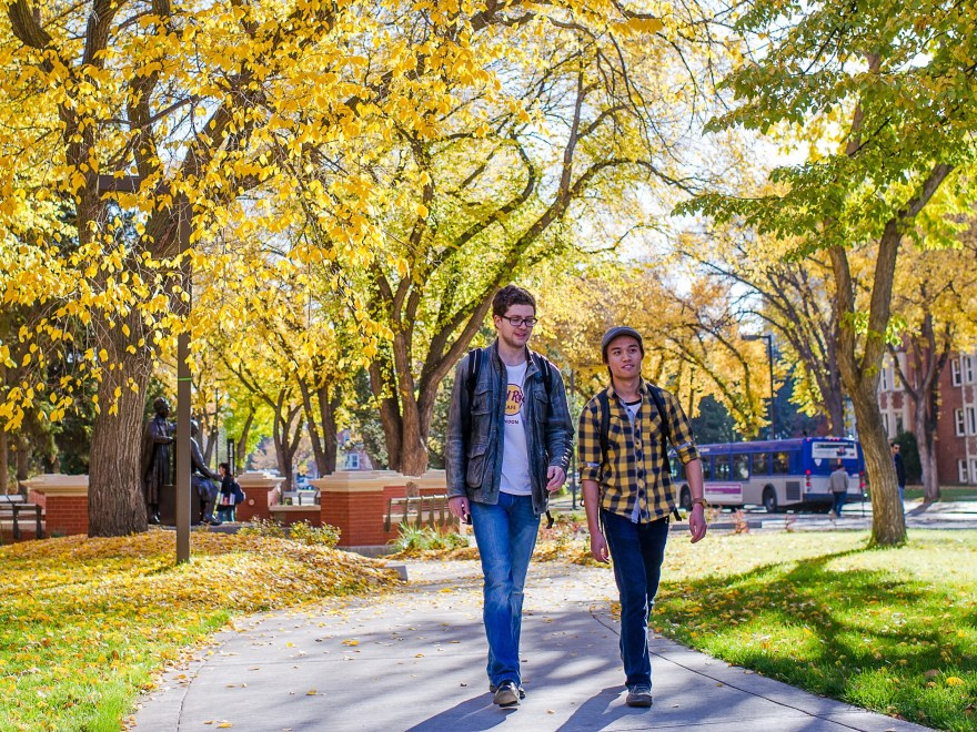 full tuition scholarships for international students in canada