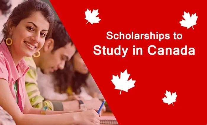 top universities in canada with scholarships