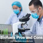 biofuels pros and cons