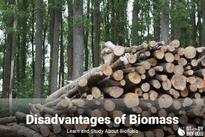disadvantages of biomass