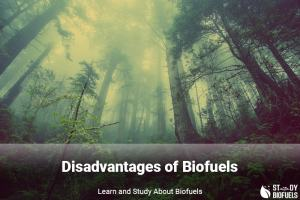 Disadvantages of biofuels
