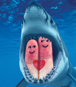 Valentine's Day vs. Sharks