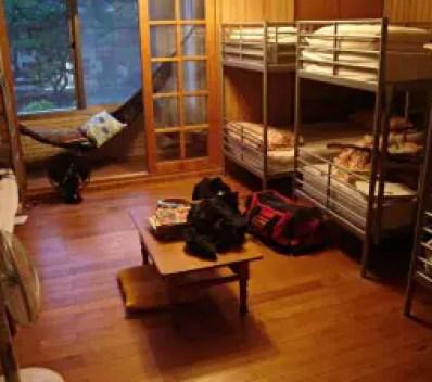 Hostel dorm room style