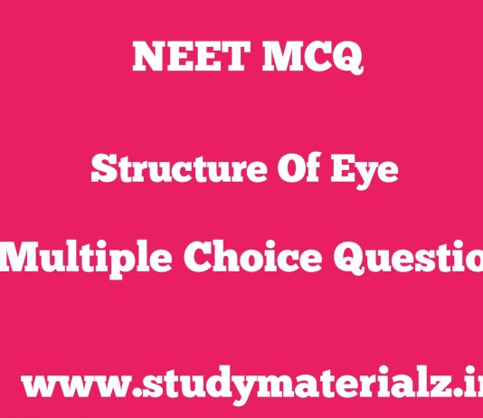 MCQs on Structure of Eye for NEET