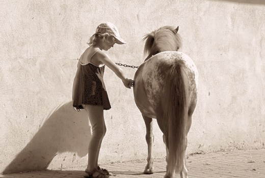 Working with horses relaxes kids