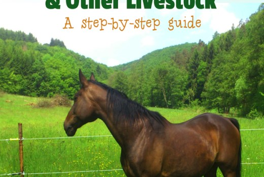 How to Construct Electric Fencing for Horses & Other Liverstock
