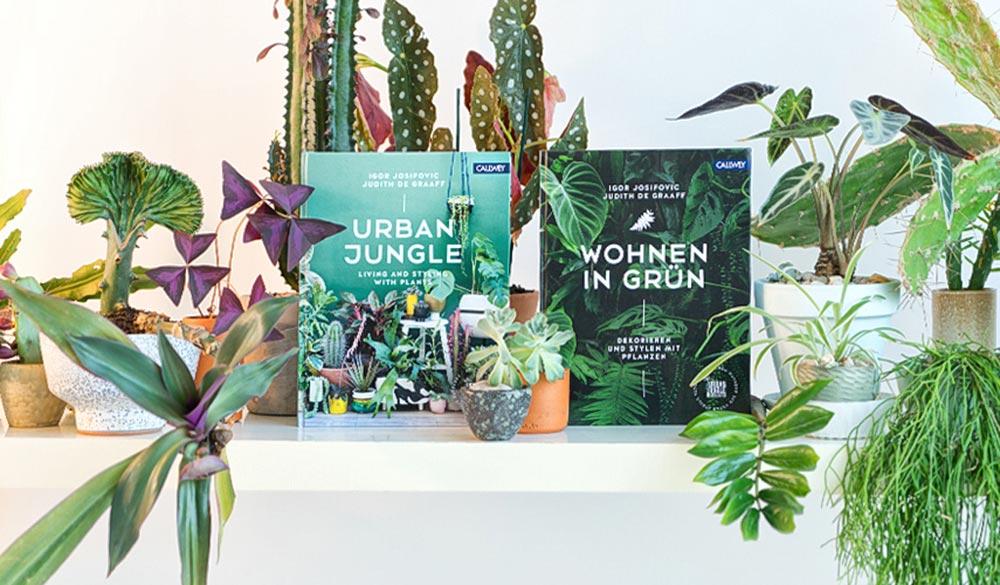 Wohnen in Grün Buch