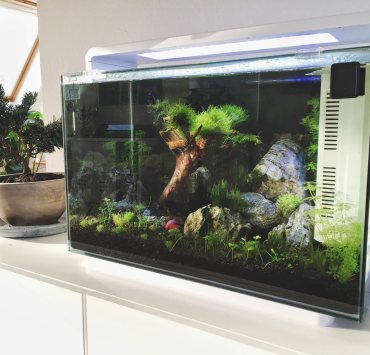 Superfish Home Design Aquarium