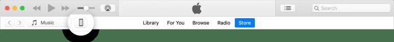 iTunes settings bar