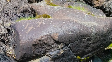 Petroglyphs along the canyon © Stuffed Suitcase