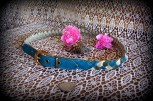 vintage, ladies belt, braided, buckle, aqua, olive, and ivory,