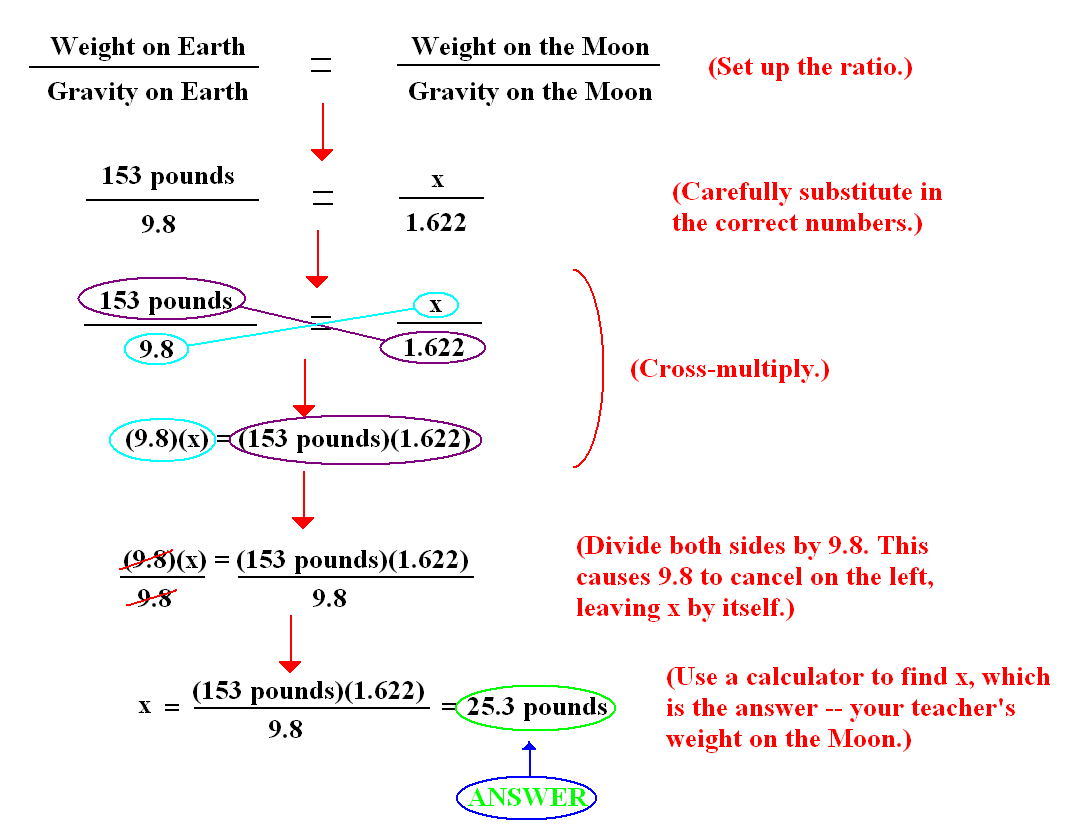 For Algebra I Lab Using Ratios To Determine Your Weight
