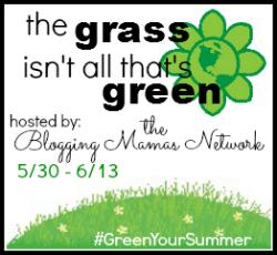 greenyoursummer giveaway hop
