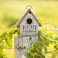 sparrow birdhouse
