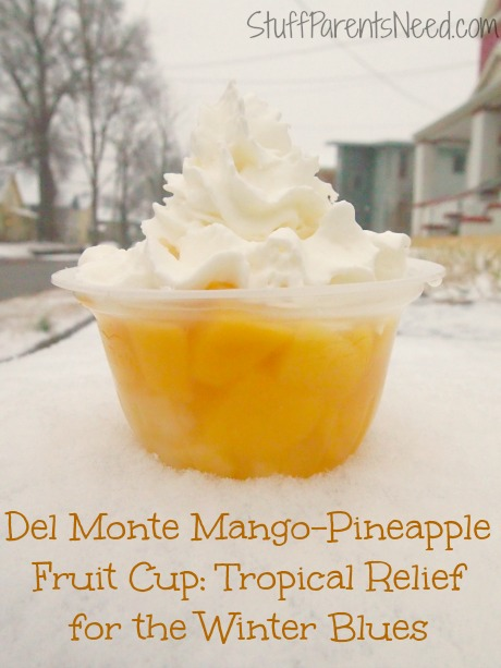 Del Monte Mango-Pineapple Fruit Cup Snacks