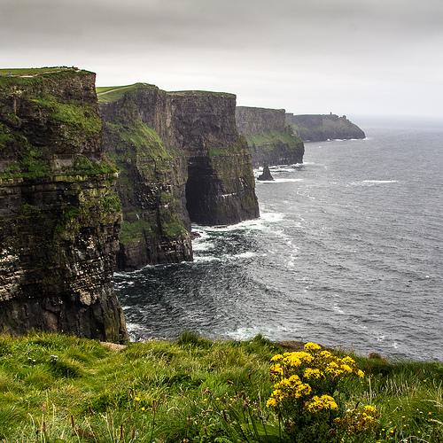 ancestry DNA ireland