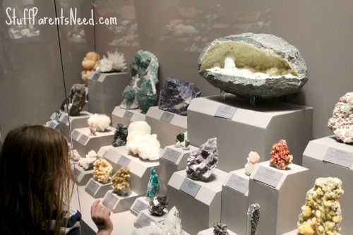 tellus museum 15