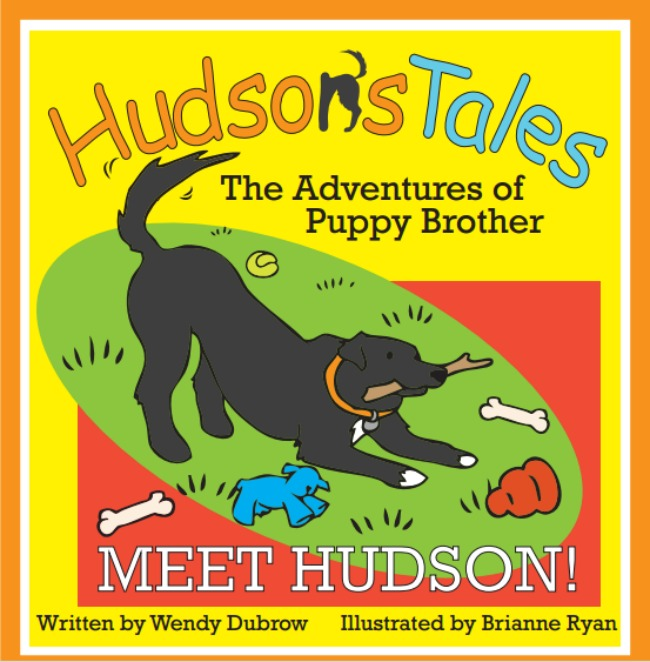 hudson's tales front cover