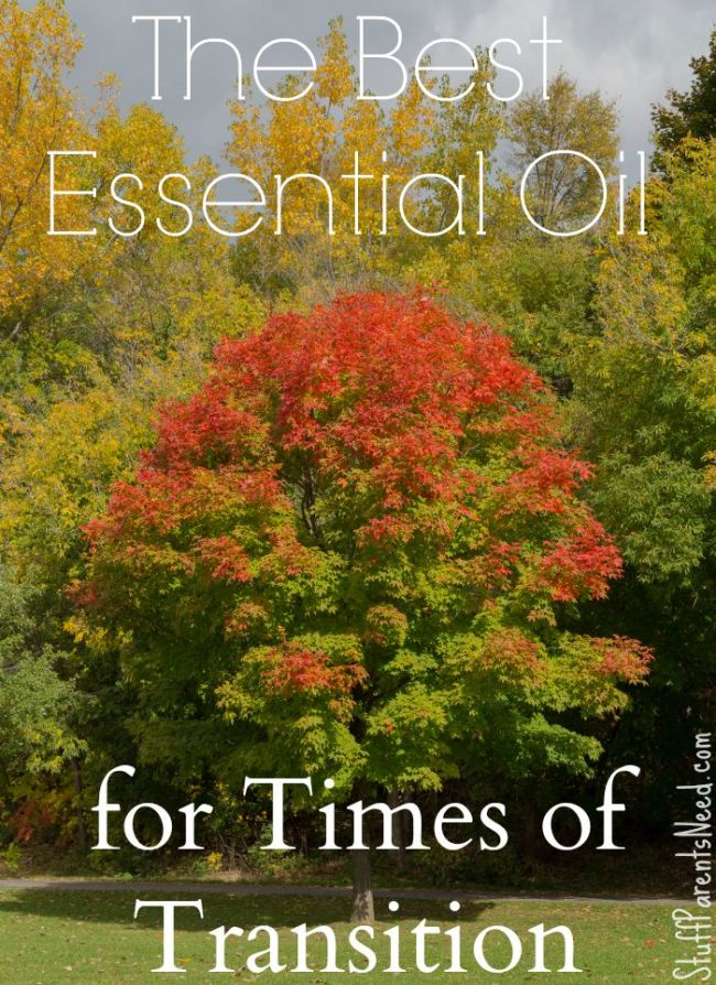 acceptance essential oil for transitions