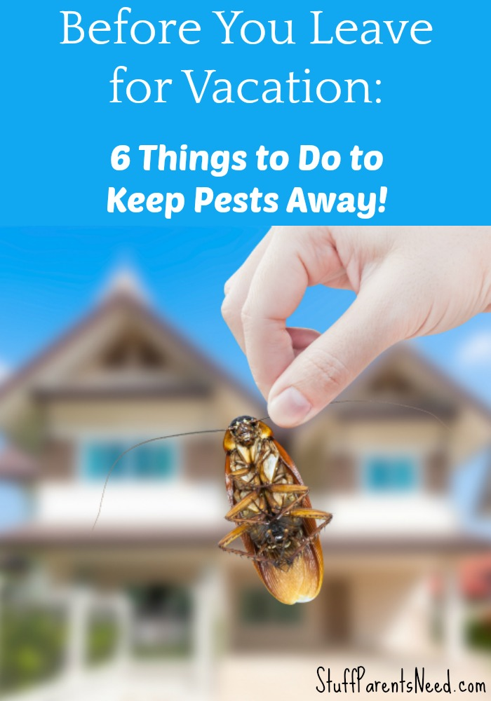pest-proofing your home_1