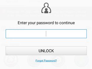 enter password to unlock app