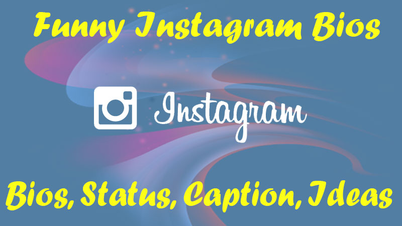170+ Latest & Best Funny Instagram Bios, Status [2019 Edition]