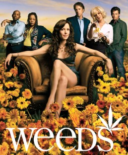 Weeds - Season 2 -  Key Art