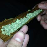 grand dady purple marijuana strain ready for a blunt wrap and roll