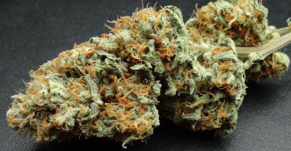 medical marijuana recreational marijuana Washington dispensary collective delivery