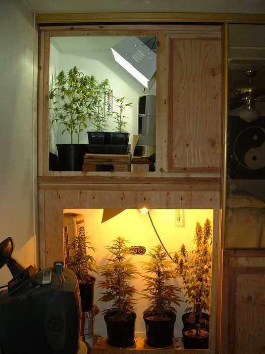 grow boxes are stuff stoners like. Black Bedroom Furniture Sets. Home Design Ideas